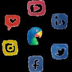 papagay social